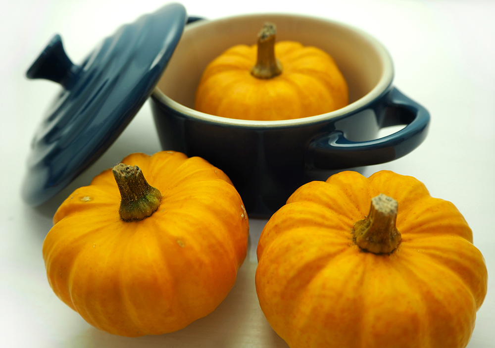 mini-pumpkins-pot